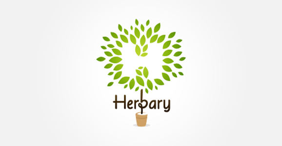 Herbary Logo